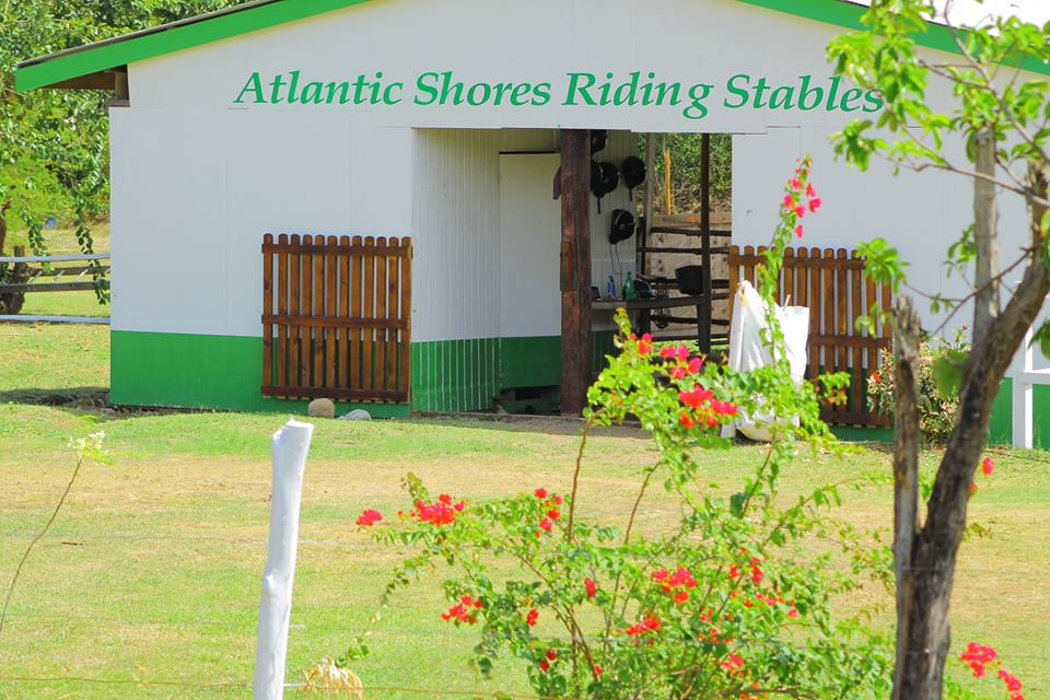 horse back riding st lucia